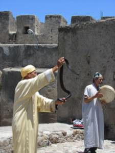 Snake show, Day Trip to Tangier