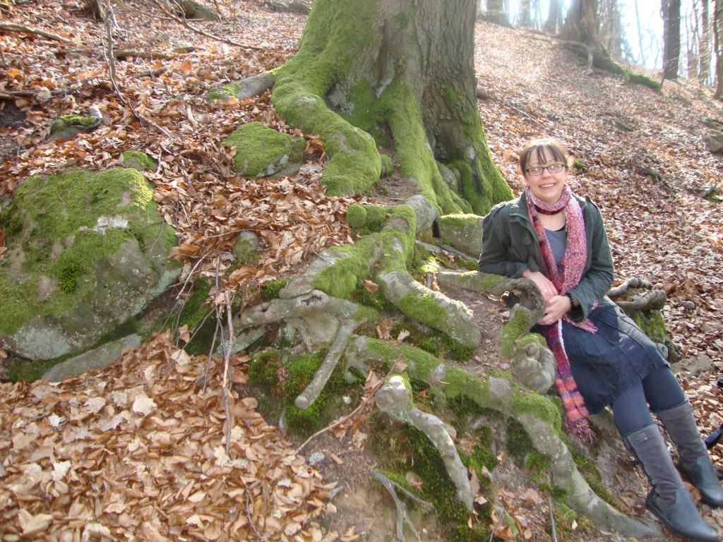 Fairy Tale Trail