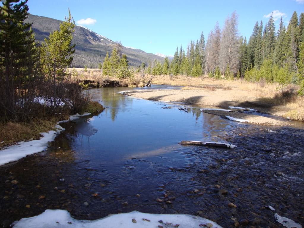 stream in the Rocky Mountains, rocky mountain national park