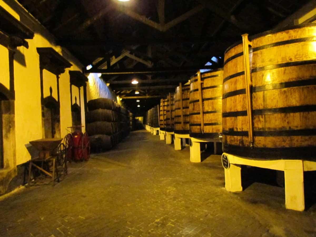 Port cellar - Porto, port tasting tasting in Porto