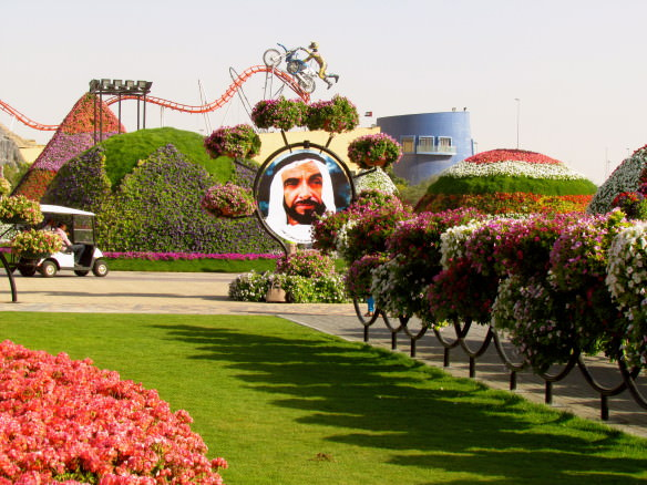 flowers and UAE ruler at Miracle Gardens Dubai