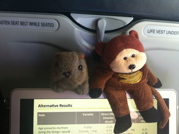 You could work on the plane, and when things get boring you could have your furry friends step in for entertainment.