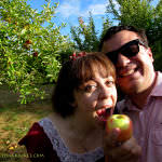 Apple Picking in New England, Delicious and Relaxing