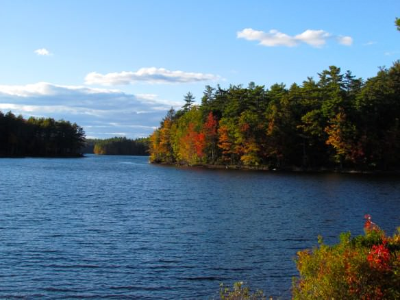 Lakeside autumn foliage in Maine.