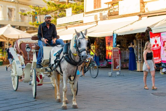 Chania horse and carriage operator with shops in the background