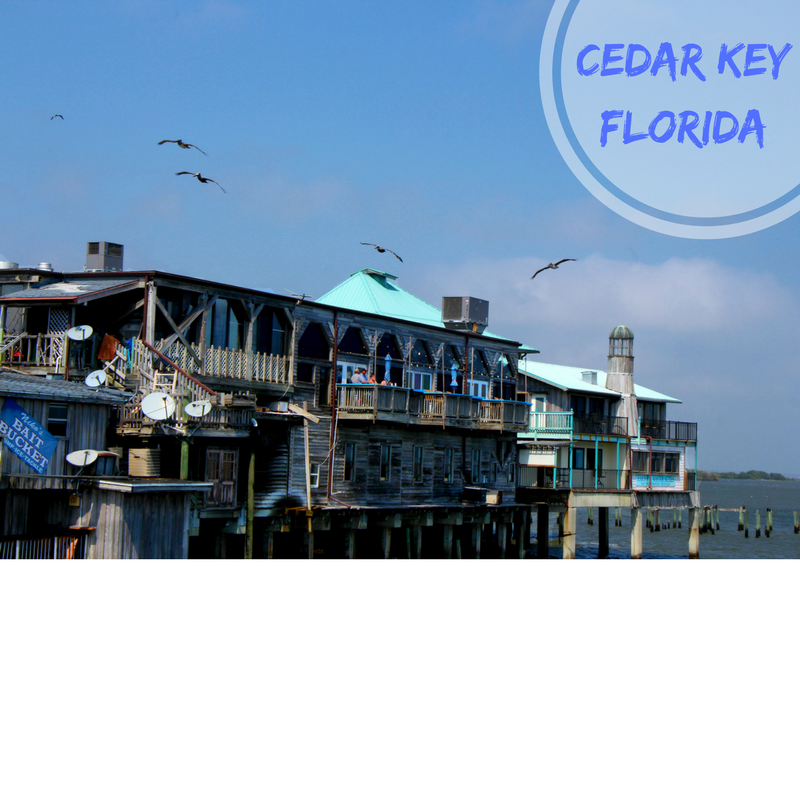 cedar key christian personals On the island cedar key historical museum explore cedar key's rich history in its historical museum located on state road 24 and 2nd street in downtown cedar key, the lutterloh building and andrews house are home to exhibits detailing the picturesque village's history dating back to prehistoric times.