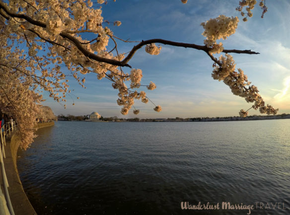 10 Things to Do in Washington, DC