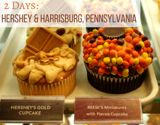 Delicious Hershey's gold cupcake and Reese's pieces cupcake at Chocolate World