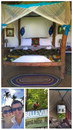 Collage of the guesthouse room and resident monkies