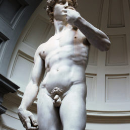 Close up of Michelangelo's David