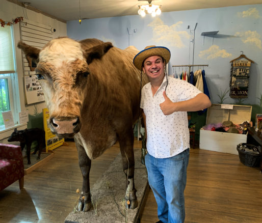 Alex with a taxidermy cow