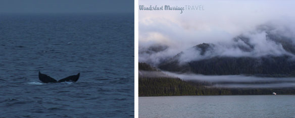 Whale tail and misty mountain collage