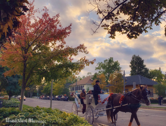 Horse and carriage on the streets of Niagara on the lake