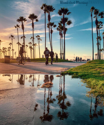 Sunset along the boulevard in Venice beach, reflected in a puddle