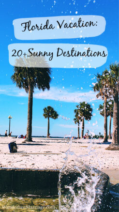 Pin with beach and palm trees for pinterest