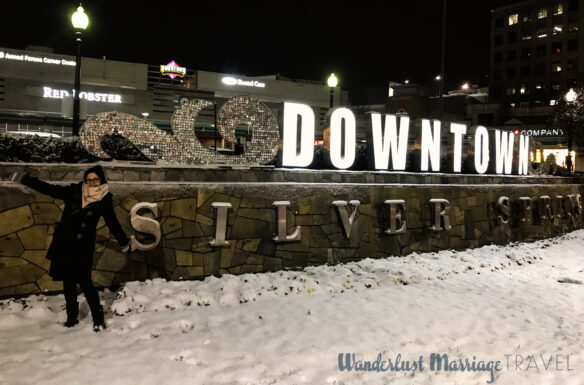 Photo of Bell in front of the Downtown Silver Spring sign in the snow