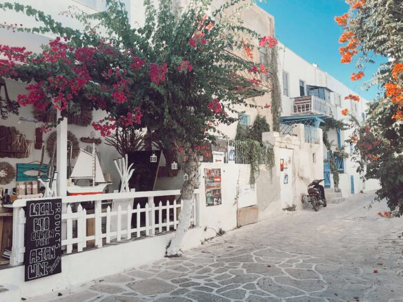 a narrow pedestrian laneway lined with flowers and white buildings on the Greek island of Antiparos