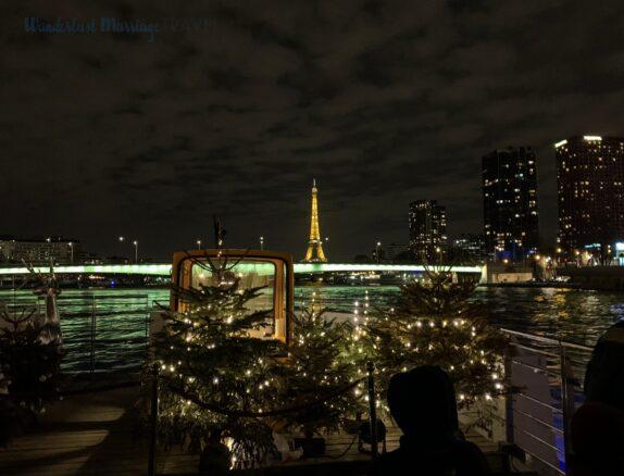 Eiffel Tower, bridge, sky scrapers, river, Paris at night as seen from a boat
