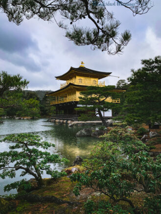 Trees surround the lakeside Kinkaku-Ji (Golden Pavilion) Temple in Kyoto, Japan