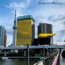 View of Tokyo Tower and Asahi Building (aka Golden Turd) from the Azuma Bridge in Tokyo, Japan