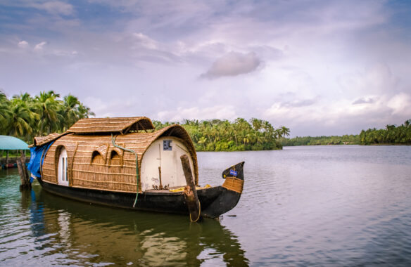 River with a small thatched roof houseboat, with palm tress on the  river bank